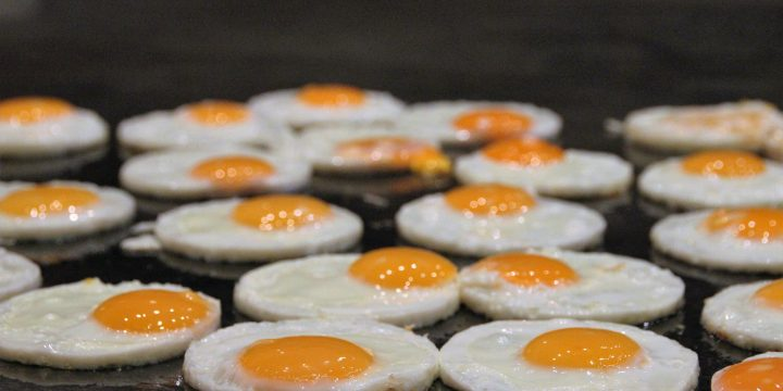 The Healthy Benefits of Eating Eggs Every Day